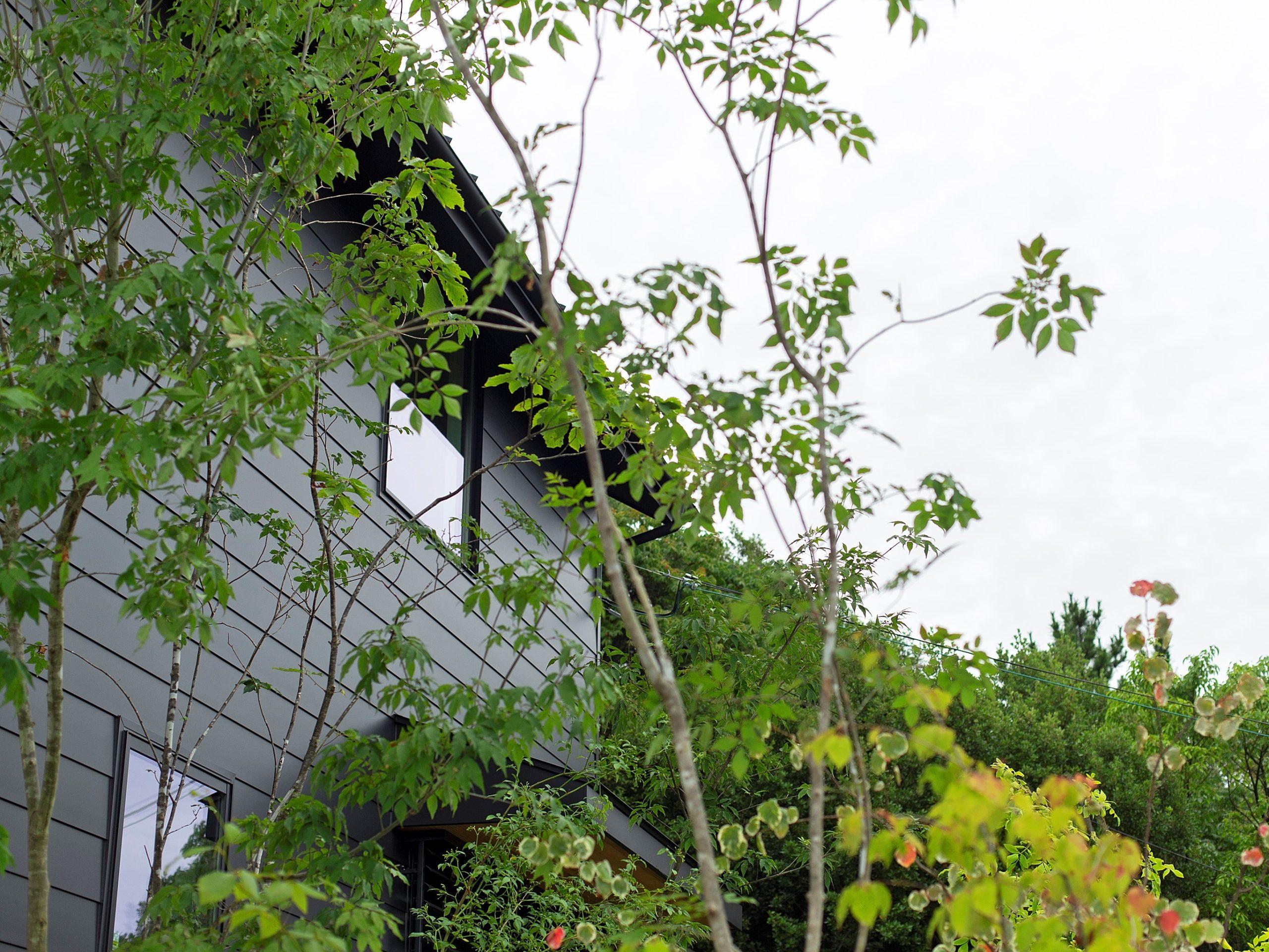 黒いガルバリウムの外壁に緑が映えます。風に揺れる木々を、心地よく眺める庭を