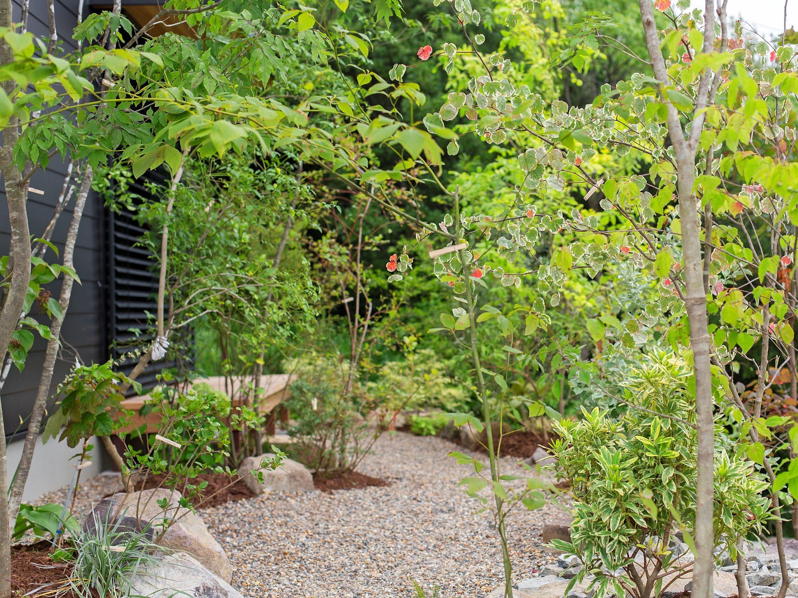 1階の大きな窓の前にウッドデッキを設けて庭を楽しむ。外付けのブラインドで日射をコントロールし、快適に過ごす。